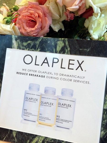 Olaplex Available at Robert Leonard Salon and Spa Seattle